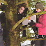bastidores_crepusculo_415.png